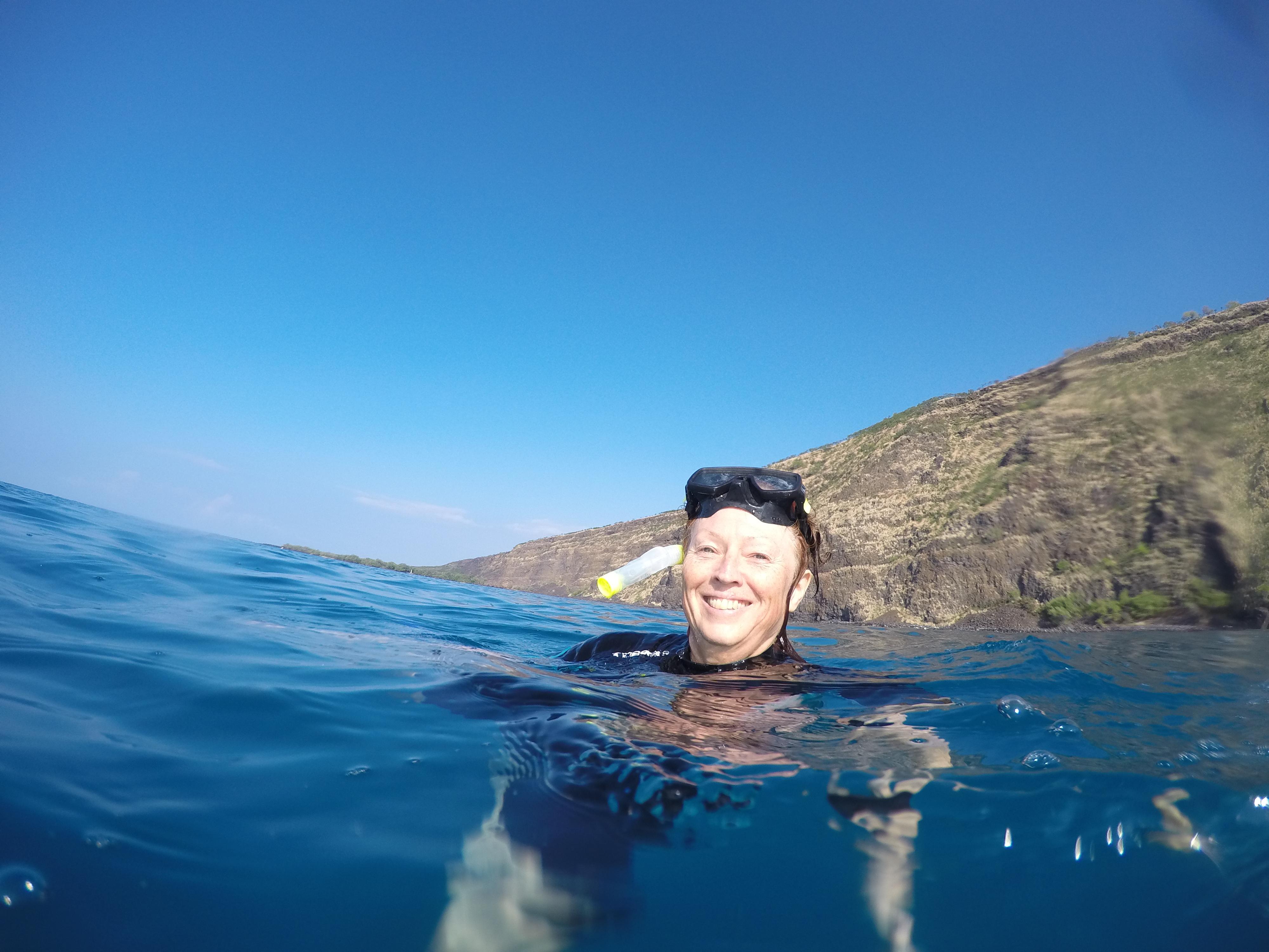 Jag simmar med delfiner Hawaii