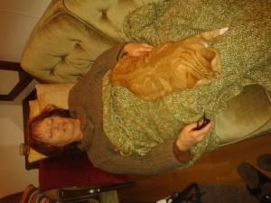 Sover gott i soffan med Mysan